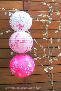Gorgeous toddler decorated lanterns inspired by cherry blossom trees DIY Paper Lanterns Paper lanter Cherry Blossom Bedroom, Cherry Blossom Decor, Cherry Blossom Party, Blossom Trees, Cherry Blossoms, Wedding Lanterns, Lanterns Decor, Paper Lanterns, Chinese Lanterns Wedding