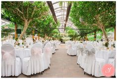 Maria and Reinhard's gorgeous whimsical pretty pink and sea green fall garden wedding ceremony and reception at Madsen's Greenhouse in Newmarket Wedding Cd, Chapel Wedding, Garden Wedding, Fall Wedding, Wedding Venues, Wedding Photos, Wedding Makeup, Wedding Reception, Wedding Ideas