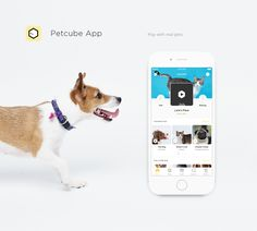 Petcube for iOS is the first mobile app ever that lets people interact with real life pets through a smartphone.