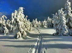 Nejkrásnější místa pro zimní sportovní aktivity   Places to go... The most beautiful winter hiking tours...  #superlifecz #winter #sports #zen #snow #apps #czechrepublic    Josef Tulka - Skialpový výlet na Lysou horu
