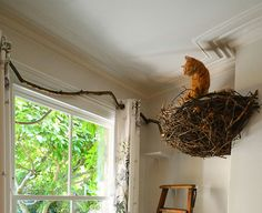 Cat nest for a catnap.  A paw-sitively relaxing creation for cats - as if they don't relax enough! Most pet furniture isn't very attractive and always seems to stand out in your living room for all the wrong reasons. As an interior designer, I wanted to create something beautiful. A nest inspired from nature, placed inside the house, seemed so surreal and yet so welcoming. We nest on our sofas after a long day at work, so why shouldn't the pets we love have their own to watch over us?