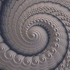 A very pure Fractal Spiral made apparently of nothing but spirals made apparently of nothing but spirals made...  you get the idea