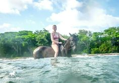 Time to go swimming with your horse