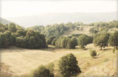 Transylvanian Landscape close by Vargyas crevice
