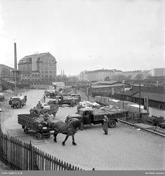 Södermalm, Stockholm. Sopåkare vid Södra stationsområdet tömmer sina kärror i den väntande godsvagnarna. Lossning, lastbilar och hästar med kärror. Järnvägsspår.