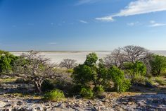 Kubu Island, Botswana, Africa, Makgadikgadi Africa, River, Island, Beach, Outdoor, Scenery, Outdoors, The Beach, Islands