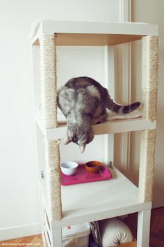 Instead of knocking over books, this cat can happily scratch at a bookcase-turned-cat tower, dreamed up by blogger Princesse Guerriere.    - CountryLiving.com