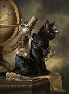 steampunk cat- i can barely get my kitty to wear a harness let alone this but still a fun idea