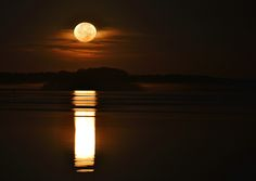 """""""Morning Moon - A Large Moon Reflects Off of a Calm Bay as It Hangs in the Clouds above the Horizon"""" by William Bartholomew #MoonArt #LookTowardstheSky"""