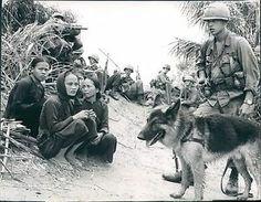 Viet Cong Women | Details about 8L Viet Cong Women Guarded 1st Calvary 1966 Viet Nam War ...