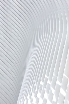Image 47 of 57 from gallery of World Trade Center Transportation Hub / Santiago Calatrava. Photograph by Hufton+Crow New York Architecture, Chinese Architecture, Space Architecture, Futuristic Architecture, Architecture Details, Contemporary Architecture, World Trade Center, Trade Centre, Zaha Hadid Interior