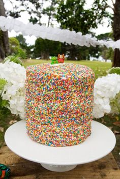 first birthday party in park with snips snails puppy dog tails theme cake completely covered in rainbow sprinkles