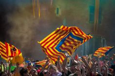Perpignan: Demonstration in support of the Catalan Language
