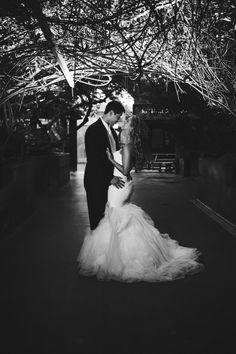 tampa wedding photographer, florida aquarium wedding
