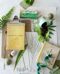 GINNY BRANCH | PROP STYLIST I just picked up the Wildflowers book the other day at a flea market - how cool to see it in this shot!