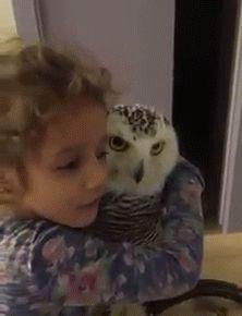 kiss ouch owl #humor #hilarious #funny #lol #rofl #lmao #memes #cute