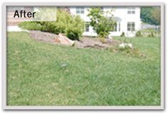 Our written estimate and lawn analysis will provide you with complete lawn care service recommendations including lawn fertilizer   http://prolawnplus.com/our-services/lawn-care/
