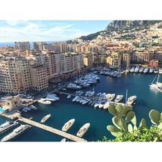 #Casino Monte Carlo, Monaco ✔️ #europe #eurotrip #italy #holidays #holidaysmoodon #vacation #withloves #winter #winterlover #sunshine #christmas #wintertime #sunnyday #instawinter #holidayseason #photooftheday #season #seasons #nature #day9 #montecarlo #monaco #yachts by leougyn from #Montecarlo #Monaco