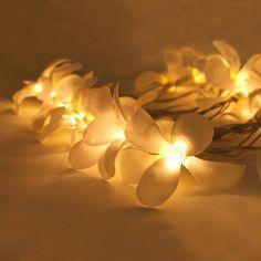 White Colors Frangipani / Plumeria Flower Wedding by thailights, $11.99