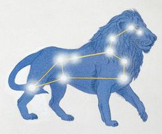 """leo constellation with lion """"overlay"""" for lack of a better word. Part of the Strength Tarot Card tattoo I want done, with the stars and the connecting lines done in UV ink"""