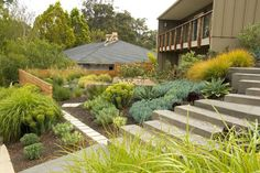 Midcentury Landscape Design Ideas, Pictures, Remodel and Decor