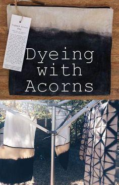 DIY acorn and iron dye