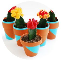 DIY Potted Plants - Touch of Paint: 25 DIYs for the Home