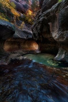 ✮ Zion National Park