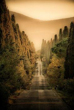 Bolgheri, Tuscany by massimodaddi, via Flickr