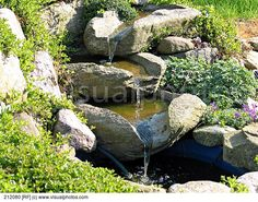 GARDENS: Pond Waterfall. Verbena Sweet Potato Vine Garden ...
