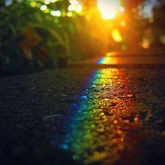 wambopain: Regenbogen mal anders
