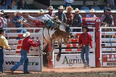 10 Tips for First-Timers to Calgary Stampede