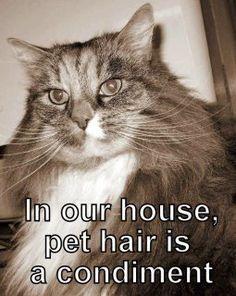 Lol! True!