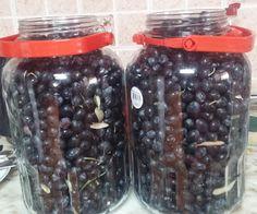 Gerçek fermantasyon ile tatlandırılmış zeytin kurmak zor değil aslında ama tüm fermente olmuş yiyeceklerde olduğu gibi, zeytinin için de ...