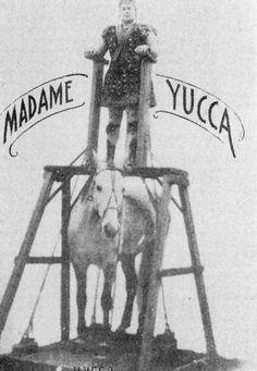 Madame Yucca - Circus Strongwoman