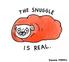 THE SNUGGLE IS REAL.