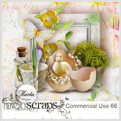 Commercial Use 66::11/02 - Wonderful Wednesday::Memory Scraps {CU}