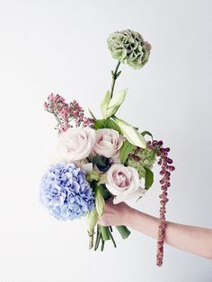 http://thegardenedit.com/pages/flowers