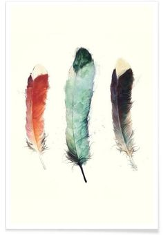 Feathers als Premium Poster door Amy Hamilton | JUNIQE