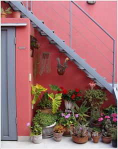 If you believe you need a cottage garden or a lot of space to grow plants, think again! Mexican Patio, Mexican Garden, House Hall Design, Patio Chico, Staircase Outdoor, Condo Balcony, Outdoor Spaces, Outdoor Decor, Bathroom Plants