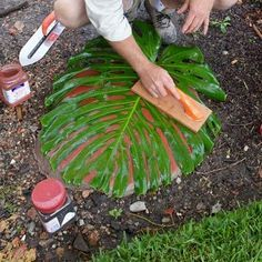 making leaf stepping stones - Gardening For Life Diy Garden Projects, Garden Crafts, Outdoor Projects, Garden Stones, Garden Paths, Garden Landscaping, Leaf Stepping Stones, Concrete Leaves, Concrete Crafts