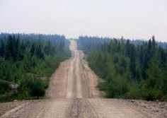 Road building is a threat to taiga biomes