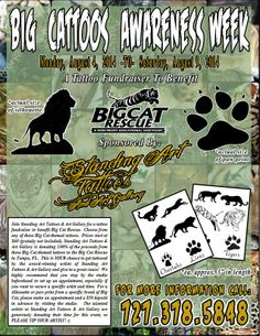 Join Standing Art Tattoos & Art Gallery for BIG CATTOOS AWARENESS WEEK, a tattoo fundraiser to benefit the Big Cat Rescue. Choose from any of these Big Cat-themed tattoos (prices starting at $60). Standing Art Tattoos & Art Gallery is donating 100% of the proceeds from these Big Cat-themed tattoos to the Big Cat Rescue!!! #bigcats #bigcattoos #bigcatrescue #cattoos #bcr #lions #cheetahs #tattoos #tigers #leopards #tattooartist #standingarttattoos #fundraiser #charity #tattoofundraiser #tampa