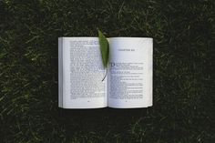 10 Best Books On Positive Psychology You Need To Read For Authentic Change