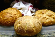 A Traditional San Francisco Sourdough Bread Recipe {Organic and GMO-Free}