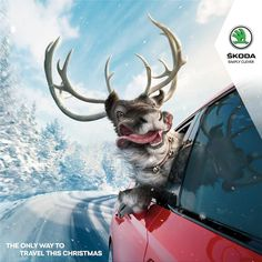 "This is a Christmas advertisement launched by Skoda, which is quite interesting. ""The only way to travel this Christmas"""