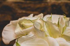 bouquet or buquet :)   • #wedding #details #pinterest #gabrielfreitas #thegabrielfreitas #photography #casamento #riodejaneiro #casamentosdorio #casamentosdoriodejaneiro #bouquet #buquet #flowers #flores #green #white #light #bride #noiva #noivo #mariage #casamentos #casamento #cerimoniadecasamento #amor #romance #casal #love #couple •