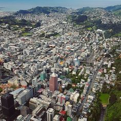City view from up high :o Wellington City Photo by abedul. Capital Of New Zealand, Wellington City, Time Of The Year, Aerial View, Homeland, More Photos, City Photo, Coast, Investment Tips