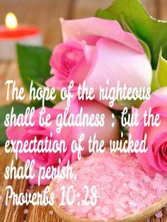Proverbs 10 :28