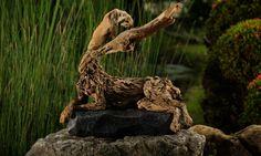 James Doran-Webb / Driftwood sculptures